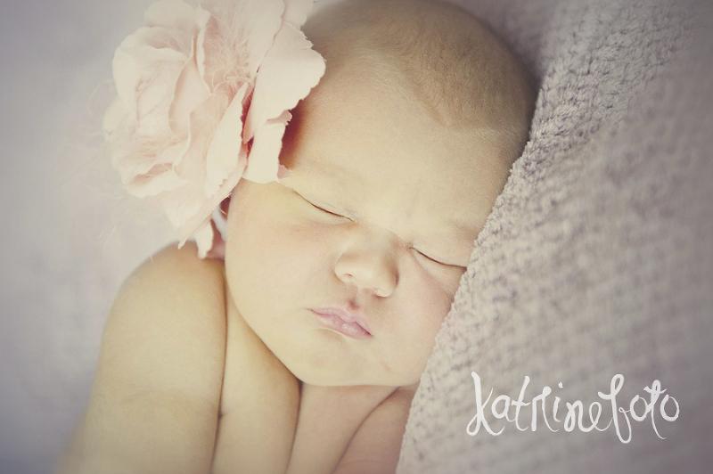 Nyfødt Katrinefoto
